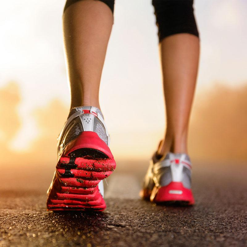 Nutrition sportive et performance